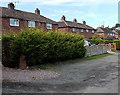 SJ5328 : Hedge and houses in Aston by Jaggery