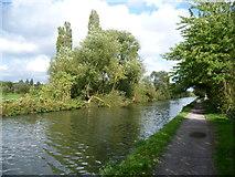 TQ1684 : The Paddington Arm of the Grand Union Canal by Marathon