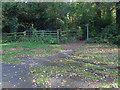 SU9170 : Footpath gate, Coach Road by Alan Hunt