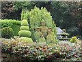 SK3998 : Topiary at 2 Stump Cross, Coaley Lane by Ian S
