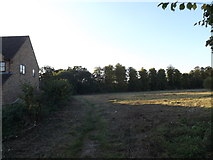 TL8647 : Footpath off the A1092 High Street by Adrian Cable
