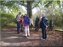 SP9314 : The Fungus Foray gets underway at College Lake by Chris Reynolds