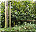 TM0957 : Footpath off Fen Lane by Adrian Cable