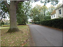 TL9541 : Sherbourne Street by Hamish Griffin