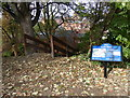 SK5804 : Information board and steps on the Motte by Mat Fascione