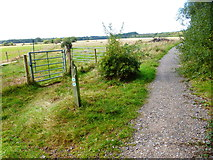 SU7209 : Track in Staunton Country Park with bridleway crossing by Shazz