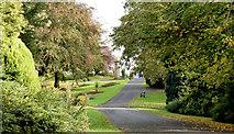 J3170 : Path, Musgrave Park, Belfast (October 2014) by Albert Bridge