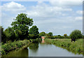 SJ9231 : Trent and Mersey Canal south-east of Stone, Staffordshire by Roger  Kidd