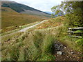 NN3233 : West Highland Way north of Tyndrum by Dave Kelly