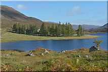 NH2231 : View towards Mullardoch House by Nigel Brown