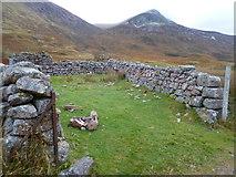NN1364 : West Highland Way at Tigh-na-sleubhaich by Dave Kelly