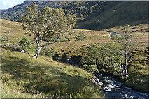 NH1838 : Gleann Innis an Loichel by Nigel Brown