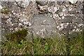 NR2053 : Bench mark on bridge over Abhainn Gleann na Gaoidh, Islay by Becky Williamson
