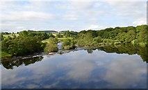 NY9170 : River North Tyne by Bobby Clegg