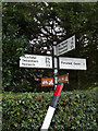 TM0961 : Roadsign on Blacksmiths Lane by Adrian Cable