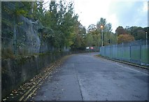 TQ3470 : Last survival of Crystal Palace Motor Racing Circuit by Christopher Hilton