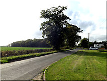 TM0663 : Saxham Street, Tyrell Oak, Gipping by Adrian Cable