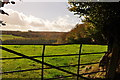 SS8630 : West Somerset : Grassy Field & Gate by Lewis Clarke