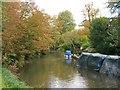 TL4010 : The Stort Navigation, Roydon by Roger Jones