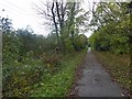 SE4148 : Power lines run parallel to The Wetherby Railway path by Steve  Fareham