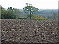 TA0313 : Ploughed Field on Elsham Hill by David Wright