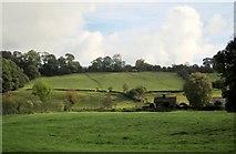 SK1648 : Valley side, Mapleton by Derek Harper