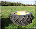 TM2978 : Tractor tyre on Metfield Common by Evelyn Simak