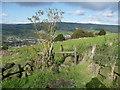 SE0124 : Stile on Hebden Royd FP63 by Humphrey Bolton