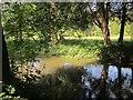 SU1031 : River channel, Wilton Park by Derek Harper