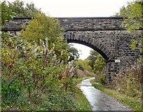 SJ9594 : Bridge #126 by Gerald England