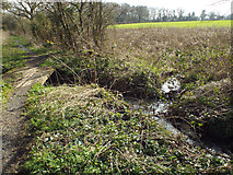 SP0874 : Confluence of brooks by a bridleway near Tanner's Green by Robin Stott