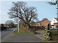 SP0775 : Houses, east side of Alcester Road, Wythall by Robin Stott