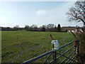 SP0775 : Between the built-on bits – pasture, west side of Alcester Road, Wythall by Robin Stott