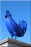 TQ2980 : Blue Cock by Oast House Archive