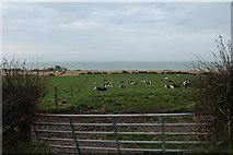NX1336 : Farmland near Drummore by Billy McCrorie