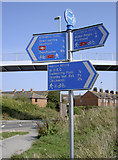 SY6778 : NCR signpost by Neil Owen