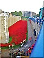 TQ3380 : The Poppies at the Tower by Derek Voller