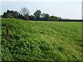 TL5275 : Farmland near Quarterway House, Little Thetford by Richard Humphrey