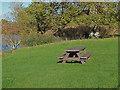 TQ0652 : Picnic table by Sheepwash pond by Alan Hunt