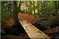 SX6887 : Footbridges over the Teign near Holystreet Manor by Christopher Hilton