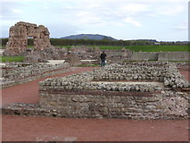 SJ5608 : Wroxeter Roman remains by Chris Allen