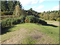 TQ5071 : Open heathland, Joydens Wood by Stephen Craven