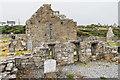L8112 : Teampall Bhreacáin, Na Seacht dTeampaill by Ian Capper