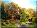 NZ3955 : Autumn colours, Backhouse Park, Sunderland by Malc McDonald