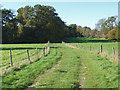 TQ0753 : Path towards Hatchlands Park by Alan Hunt