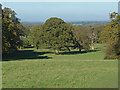 TQ0752 : View north from Hatchlands Park by Alan Hunt