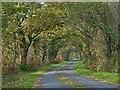 SH4539 : Minor road near Llanystumdwy, Llyn Peninsula by Robin Drayton