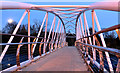 J3675 : The Sam Thompson Bridge, Victoria Park, Belfast - November 2014(2) by Albert Bridge
