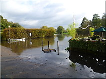 TQ1673 : High tide at Riverside, Twickenham by Marathon