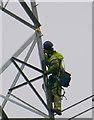 NN7905 : Balfour Beatty working on pylons near Kinbuck by Ian S